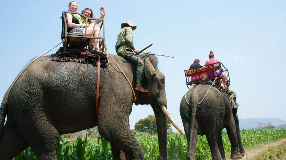 Elephant Ride in Vietnam